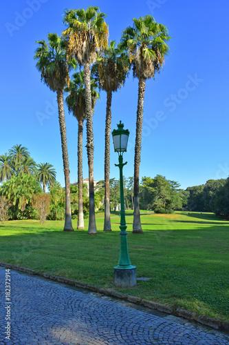 Fotografie, Obraz  Napoli, Capodimonte, la Reggia e il parco.