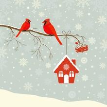 Cute Red Cardinal Bird With Bi...