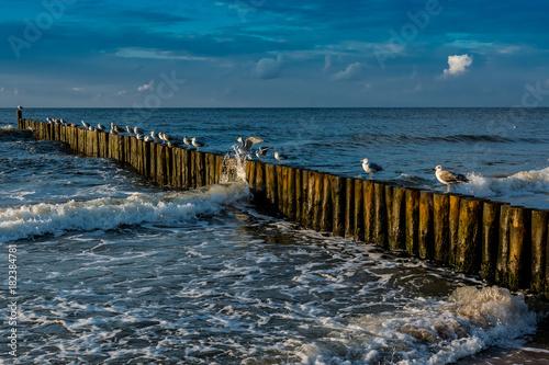 Ustronie Morskie,plaża. Bałtyk - 182384781
