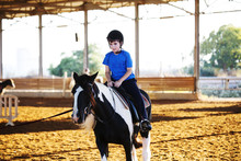 Portrait Of Little Boy Riding A Horse. First Lessons Of Horseback Riding.