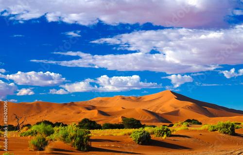 Poster de jardin Desert de sable Sand dunes Namib-Naukluft national park, Namibia