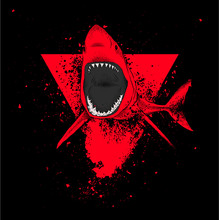 Shark In A Triangle. Abstract Drawing. Vector Illustration.
