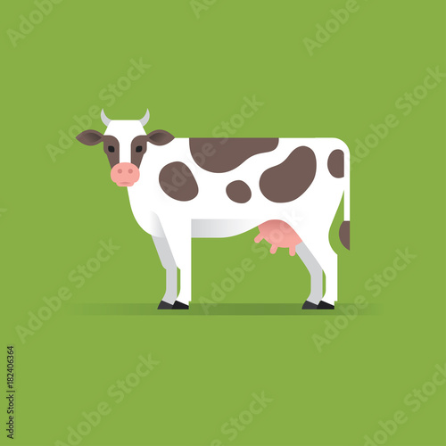 Photo Vector cow illustration.