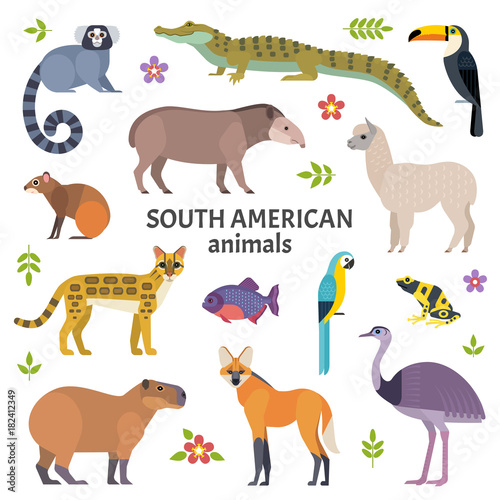 Animals of South America Wallpaper Mural