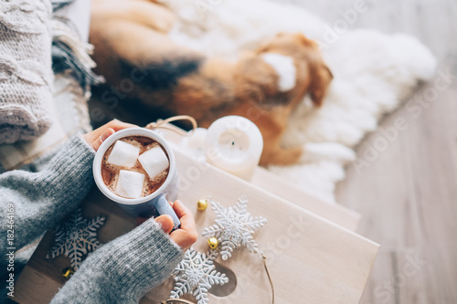Woman hands ith cup of hot chocolate close up image, cozy home, sleeping dog, christmas time