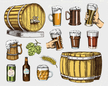 Beer Glass, Mug Or Bottle, Woo...
