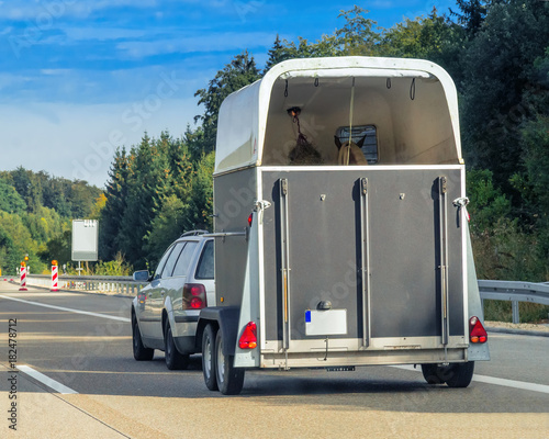 Photo  Car with horse trailer on road in Switzerland