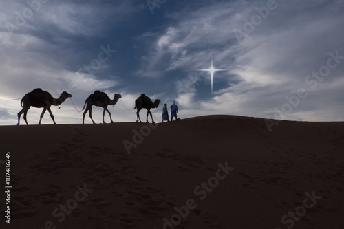 Fotografija  Camels and riders in the desert at night