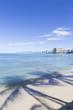 ワイキキビーチとヤシの影