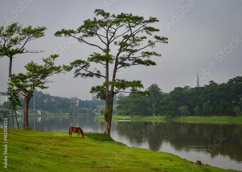 Deurstickers Donkergrijs Landscape of Dalat, Vietnam