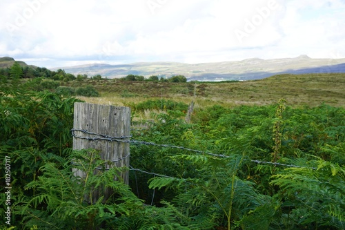 Deurstickers Bos rivier Rustic wire fence overlooking a meadow