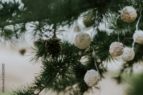 Decorations on conifer