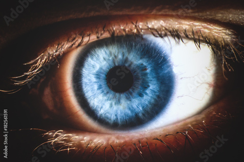 Poster Iris An enlarged image of eye with a blue iris, eyelashes and sclera. the shot is made by a slit lamp with a built-in camera