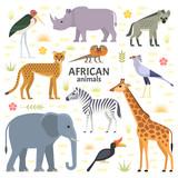 Fototapeta Fototapety na ścianę do pokoju dziecięcego - Vector illustration of African animals and birds: elephant, rhino, giraffe, cheetah, zebra, hyena, secretarybird, marabou and frilled-neck lizard, isolated on transparent background.