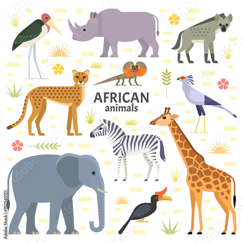 Photo  Vector illustration of African animals and birds: elephant, rhino, giraffe, cheetah, zebra, hyena, secretarybird, marabou and frilled-neck lizard, isolated on transparent background