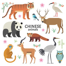 Vector Illustration Of Chinese...