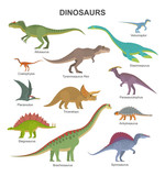 Fototapeta Dino - Vector collection of cute flat dinosaurs, including T-rex, Stegosaurus, Velociraptor, Pterodactyl, Brachiosaurus and Triceratop, isolated on white.