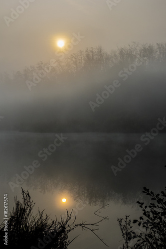 Fotografia  Żółty dysk słońca unosi się w mglistej porannej mgle