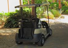 Golf Cart Parked In Park. Arub...