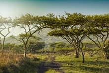 South Africa Drakensberg Mount...