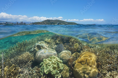 Above and below sea surface, healthy coral reef underwater in the lagoon of Grande Terre island off the coast of Noumea city, New Caledonia, Pacific ocean, Oceania