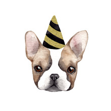 French Bulldog. Happy Birthday. Watercolor Illustration
