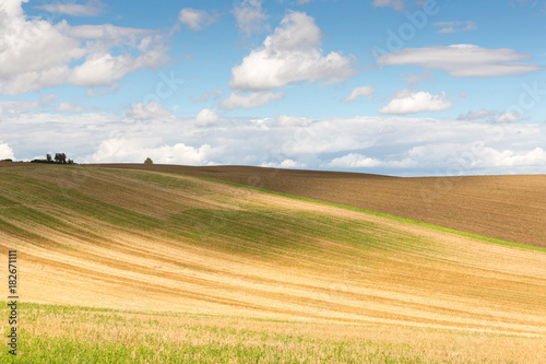 Scenic view of landscape against sky during summer
