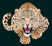 Portrait Of A Grinning Leopard