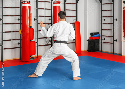 Photo Stands Martial arts Male karate instructor in dojo