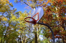Basketball Backblard Outdoors ...