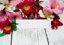 Paper Card With Alstroemeria F...