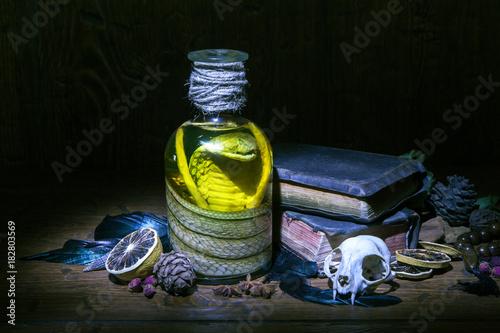 Plakát Vintage witchcraft still life