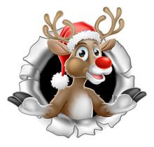 Santa Hat Reindeer Tearing Thr...