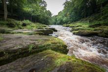 Green Mossy Rocks At River Wha...