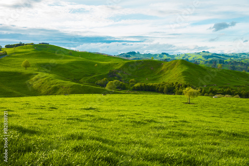 Foto  Hills of the New Zealand