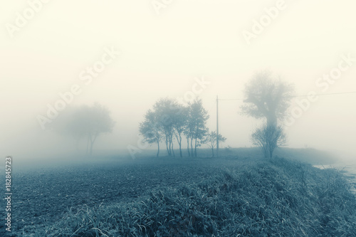 Keuken foto achterwand Groen blauw Natural landscape in autumn, trees and fields in the fog