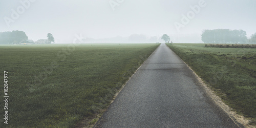 Foto op Plexiglas Khaki Road in misty dutch countryside with trees on horizon.