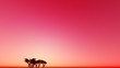 canvas print picture - Red dusk one tree 3D render