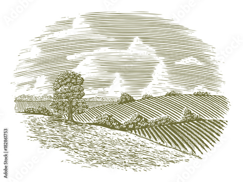 Fotobehang Wit Woodcut Vintage Countryside