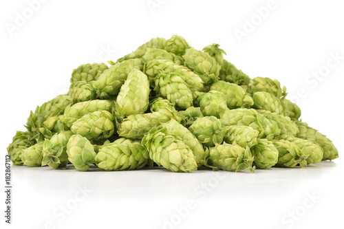 Fényképezés Heap of fresh green hops (Humulus lupulus) isolated on white background