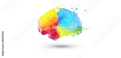 cervello, fantasia, colori Canvas Print