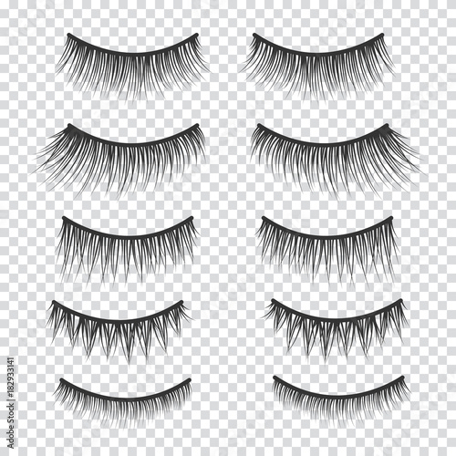 Fototapeta Feminine lashes vector set. False eyelashes hand drawn.