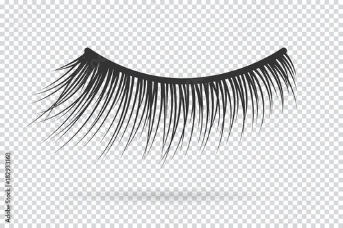 Obraz na plátne Feminine lashes vector. False eyelashes hand drawn.