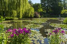 Les Jardins De Claude Monet à
