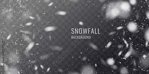 Tablou Canvas Vector realistic snowfall against a dark background