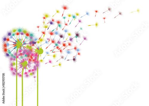 Dandelions w wiatrowej ilustraci