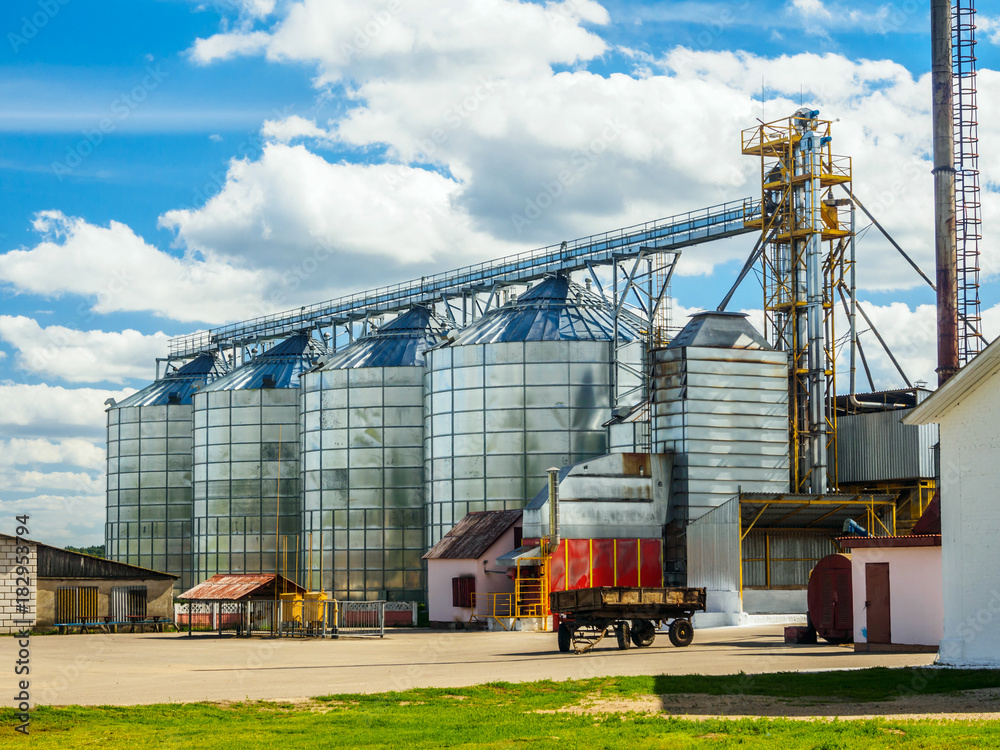 Fototapety, obrazy: Agricultural Silo, Grain Purifying And Drying Up Complex In Summer