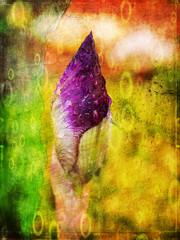 Obraz Irys, obraz na abstrakcyjnym tle