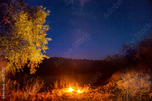 Poster Cerf Fire at night in mountains