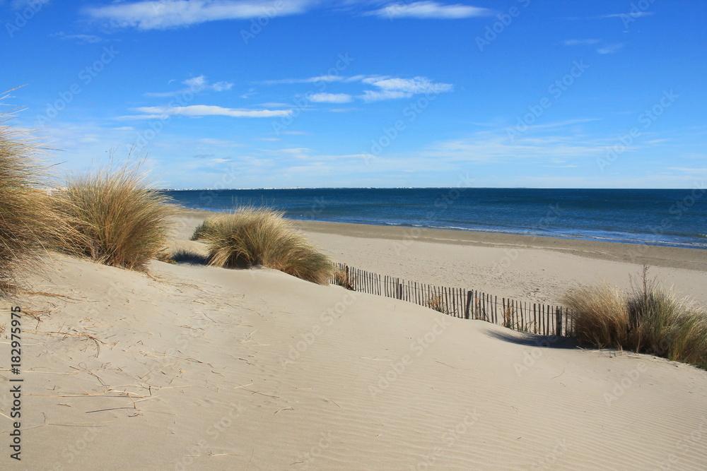 Fototapeta Plage de sable fin en méditerranée, sud de France